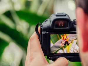 Photography Tips and Tricks for Families Staying in Travel Nurse Housing